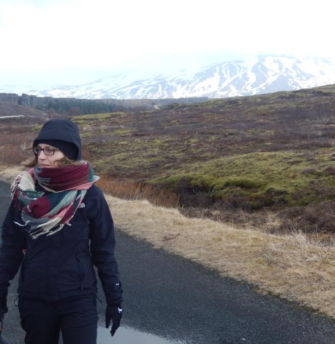 IslandIceland-6